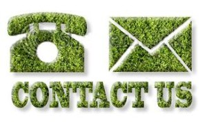 green contact